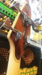 Alembic Essence 4 gaucher